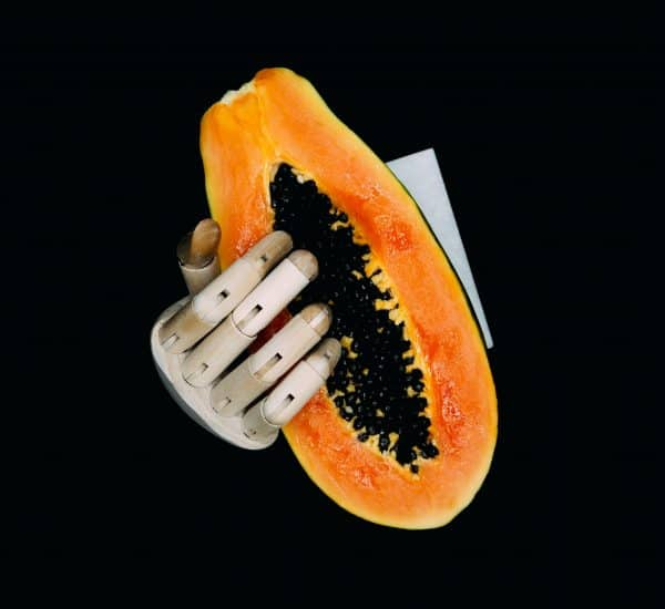wooden-fingers-papaya-seeds-black-background