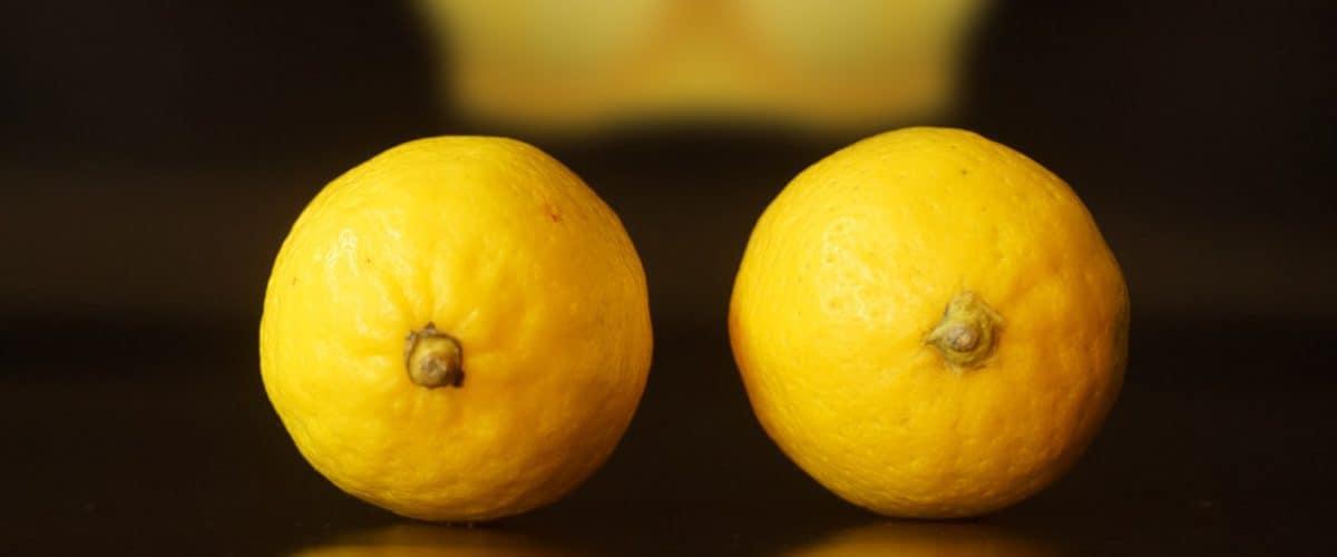 lemon-yellow-bra-background-nipple-clamps-representation